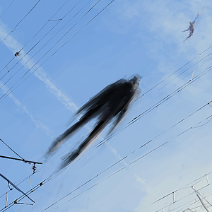 Joint Dreaming by Alex Andreev